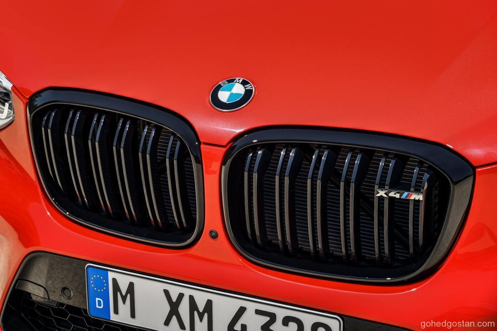 The All New BMW X4 (7)