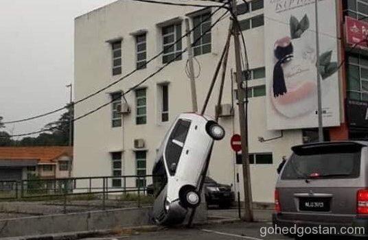 Viva-up-a-pole_1