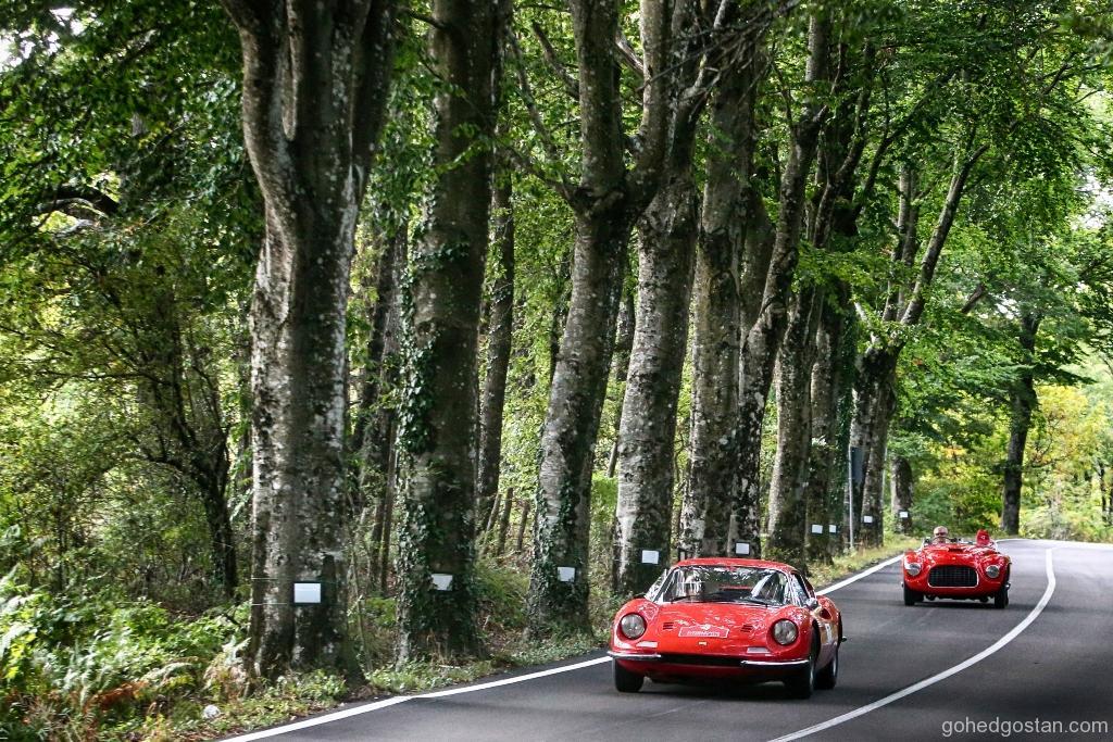 Ferrari Cavalcade 20